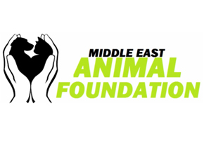 Middle East Animal Foundation